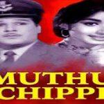Muthu Chippi