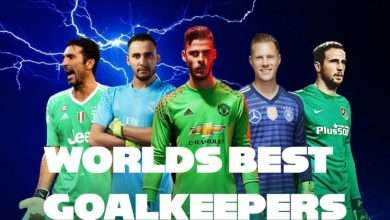 Top five best goalkeepers for the 20192020 season1
