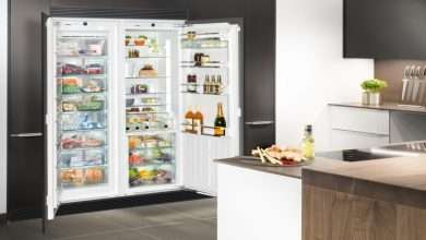 Choosing the Right Refrigerator for Your Home