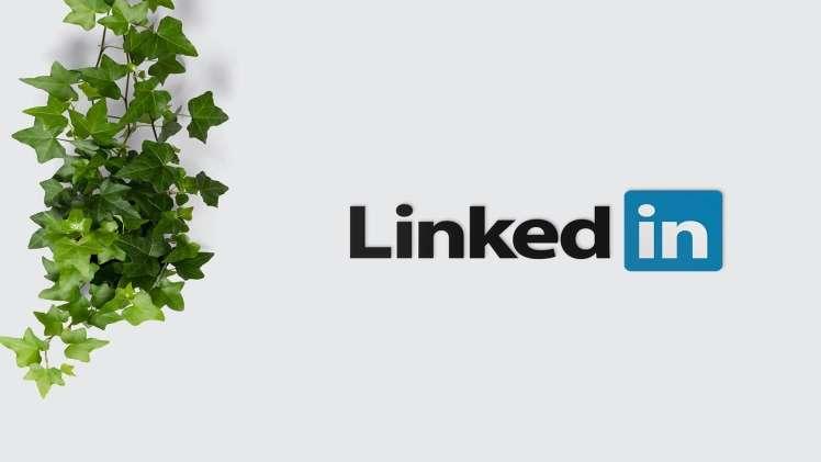 Building my Brand on LinkedIn Using GOSO.io