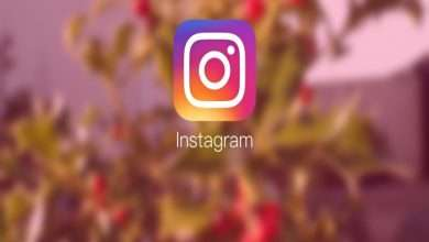 Notable Features Of Instagram To Sustain The Customer Base