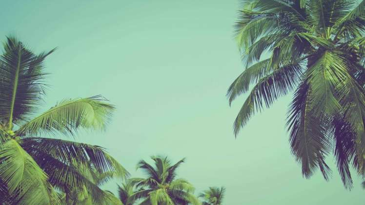 The Summer Life Hacks You Need If Youre Moving to Chennai for the First Time