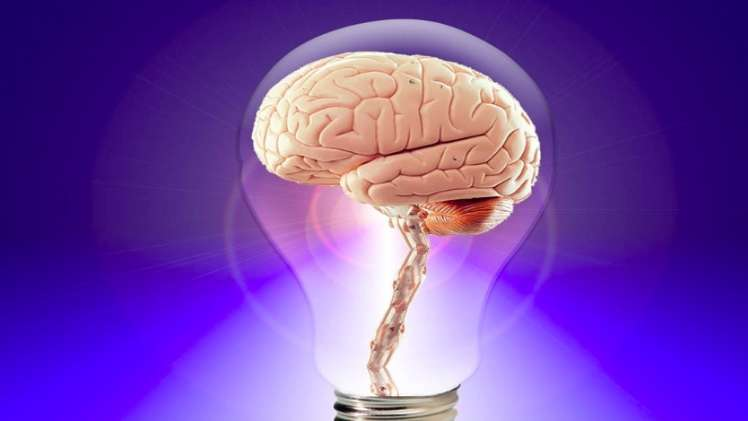 Nootropics and How They Can Benefit Everyone.