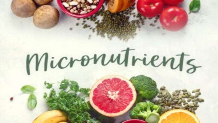 Why Are Mirco Nutrients Important for Our Body