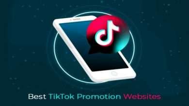 Best TikTok Promotion Websites 758x501 1