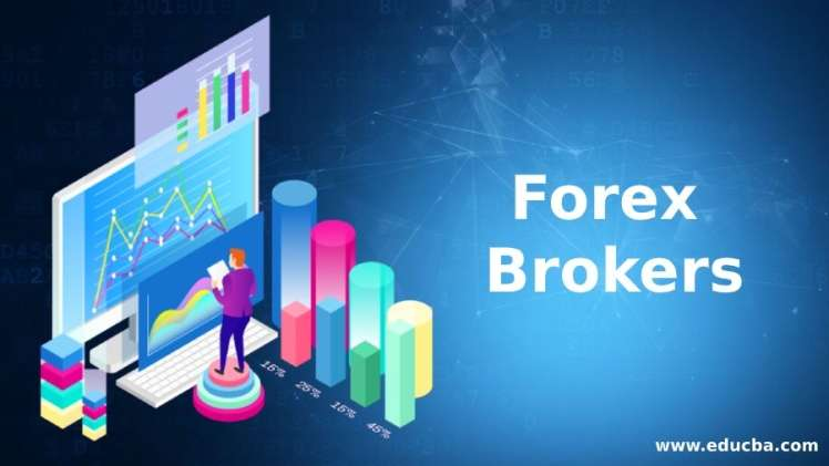 Forex Broker How to Choose the Right One For Your Trading Strategy