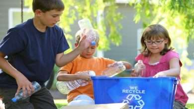 How to Recycle at Home with dKids