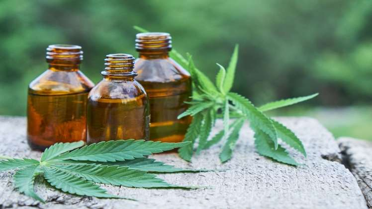 I have anxiety can CBD Oil help me