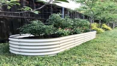 Reasons Why You Need a Raised Garden Bed