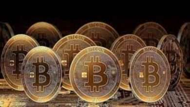 The Reason behind Outperformance of Bitcoin in 2020 1
