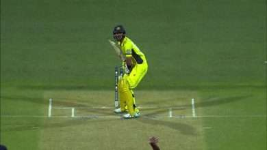 7 Most Important and Effective Cricket Tips for Beginners to Improve Their Game