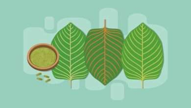 The Red Bali Kratom Strain A Complete Overview