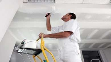 Why Should You Employ Professional Painters For Your Homes
