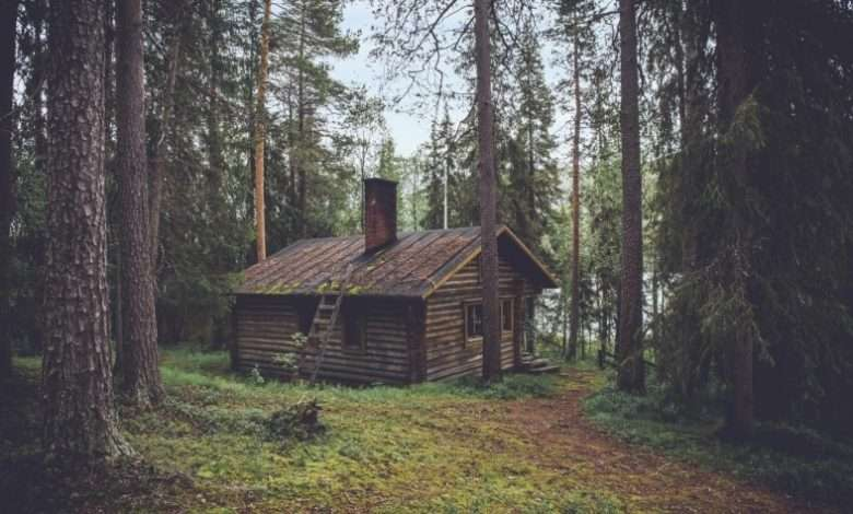 Incredible Benefits of Owning a Log Cabin