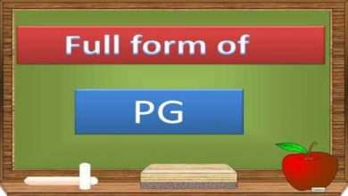 What Does PG Full Form Mean All You Need To Know 1
