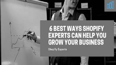 6 best Ways Shopify Experts Can Help You Grow Your Business