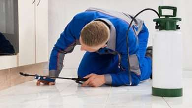 EPA Requirements for Pest Control Companies