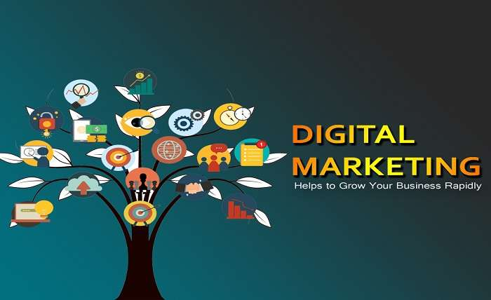 Top Reasons Why Digital Marketing Can Help Grow Your Business