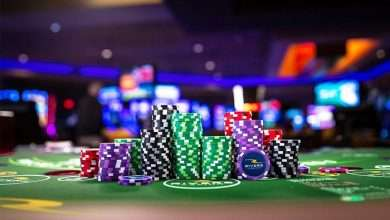 What Features Make a Casino Stand Out