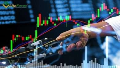 You Must Choose The Best Forex Broker To Strengthen Your Position In Forex Trading